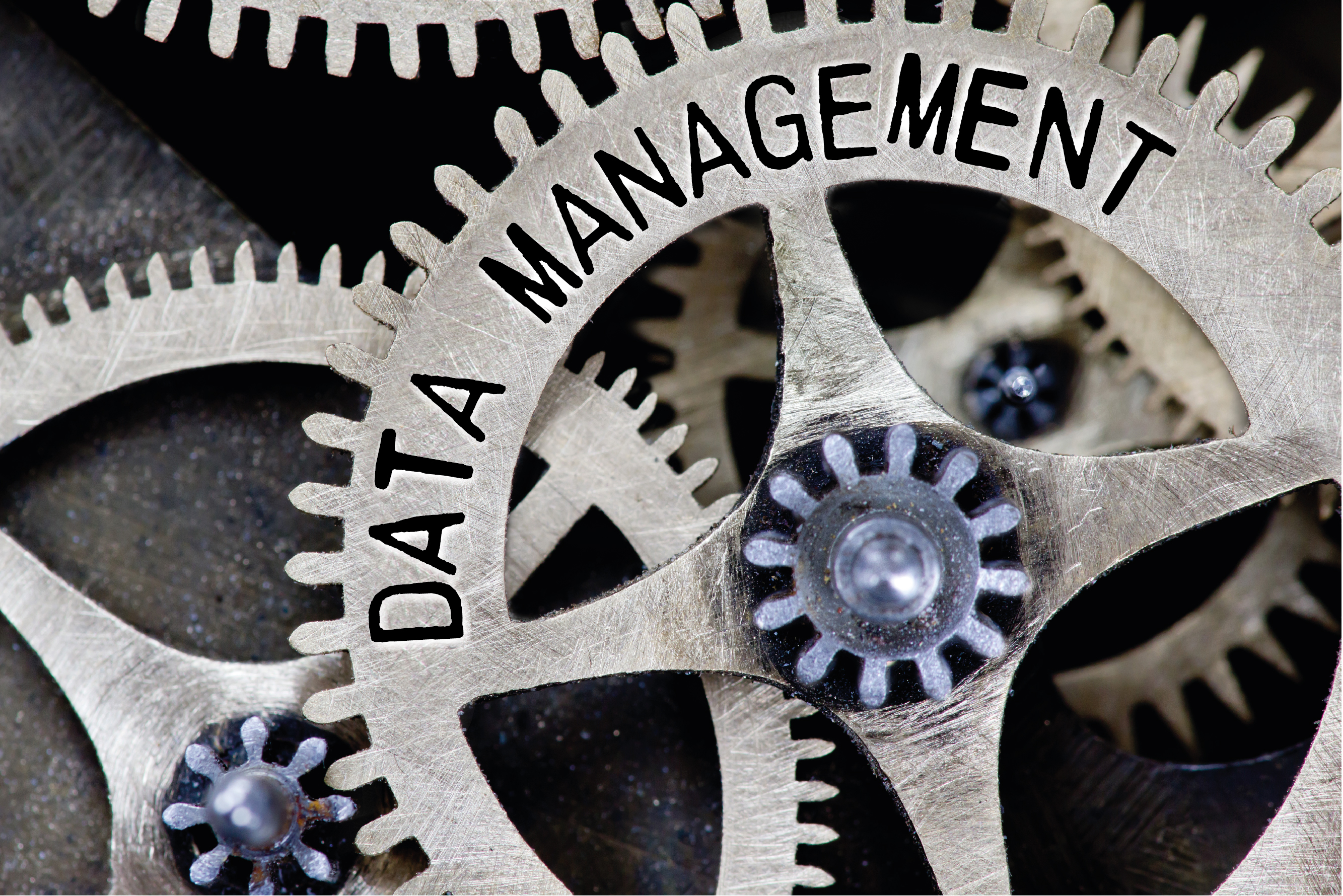 Click to view a full range of data management and l;ead generation services